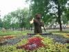 yar_bear_sergei-galchenkov.jpg